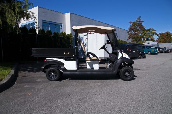 Zephyr Electric Golf Cart for Sale
