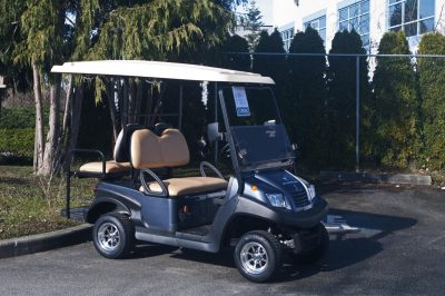 Blue Utility Electric Golf Cart