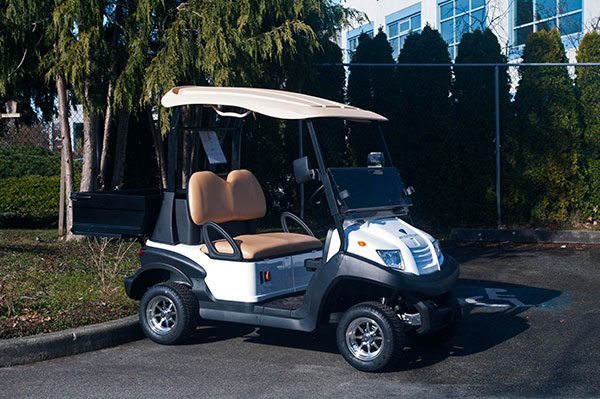 White Zephyr Electric Golf Cart For Sale
